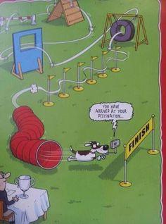 Agility cartoon