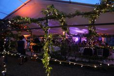 The marquee from Academy marquees built over the rose arbor in the bride's garden in hertfordshire