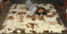 Baby alpaca fur carpet from the Andes, brown and white spots
