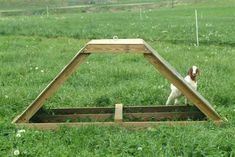 shade shelter with climbing platform for goats