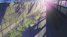 Makoto Shinkai Makoto Shinkai Zerochan Anime Image Board