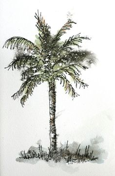 Palm tree watercolor original painting 5 1/2 x 9 by ruthsartwork, $40.00