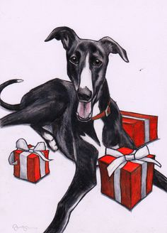 Greyhound whippet Lurcher Christmas cards Pack by JimGriffithsArt