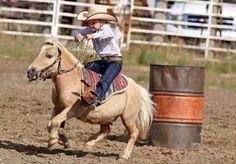 Little cowboy. Little cowboy. Little cowboy. Little cowboy. Cute Horses, Pretty Horses, Horse Love, Beautiful Horses, Mini Horses, Poney Miniature, Miniature Ponies, Miniature Horse Tack, Horse Pictures