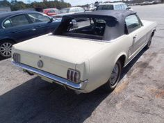 Large inventory of old Mustangs for sale - GT's, Fastbacks, Convertibles. Sn95 Mustang, Ford Mustang Fastback, Project Cars For Sale, 1967 Shelby Gt500, Mustang For Sale, Custom Muscle Cars, Car Makes, Mustangs, Dream Cars
