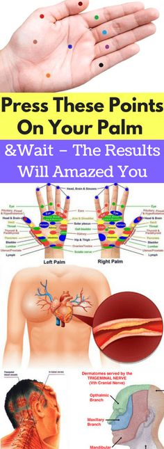 Press These Points On Your Palm And Wait – The Results Will Amazed You - FHL
