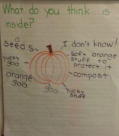 Adventures in Kindergarten: Pumpkin Fun