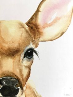 illustration watercolor original print fawn 4 Fawn 4 Original Watercolor PRINT You can find Aquarell tiere and more on our website Watercolor Pencil Art, Watercolor Animals, Watercolor Print, Watercolor Paintings Of Animals, Watercolor Illustration, Watercolor Projects, Watercolor Images, Painting Flowers, Watercolor Techniques