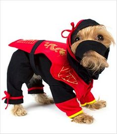 Dragon Ninja Dog Costume