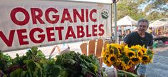 Organic Farming is Growing (But Not Everywhere) - The Equation