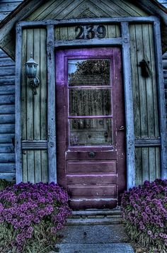 Door entrance is purple with purple flowers and distressed blue wood - gorgeous