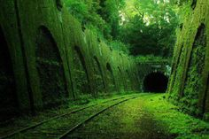 Abandoned railway in France