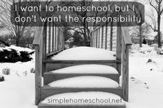 I want to homeschool, but I don't want the responsibility