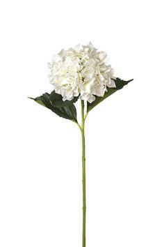 Fleur Garden Hydrangea Stem (Set of 6)