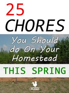 25 Homesteading Chores for Spring. Homesteading | Spring Chores | How to Homestead