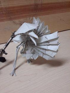 Test fold: Master Crane by Víctor J. Quintero