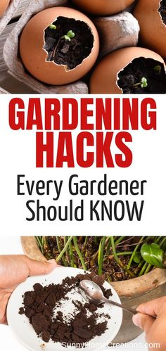 gardening hints, tips, advice, and hacks all beginners and expert gardeners should know. These hacks are perfect for your vegetable, flower and backyard garden. They are simple and easy to do and can make a big difference in your gardening results. Organic Mulch, Organic Gardening, Vegetable Gardening, Grow Organic, Gardening For Beginners, Gardening Tips, Companion Gardening, Flower Gardening, Gutter Garden