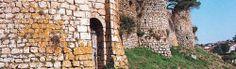 les derniers seigneurs de Bressuire se contenteront de faire les indispensables réparations, n'hésitant pas à détruire pour restaurer ce qui pouvait l'être. La grande façade de Jacques de Beaumont s'est écroulée en 1876 après un violent orage et un chateau moderne a été construit à l'emplacement du logis.