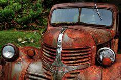 Rusty Dodge, beautiful...