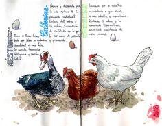 Jaillus ArtBook - las señoras del corral 001 | Flickr - Photo Sharing!