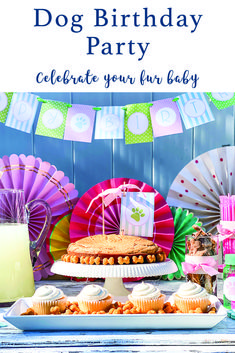 Host a special party for your fur baby or pet lover with inspiration from Everyday Party Magazine #DogBirthday #PetParty #PuppyBirthdayParty