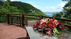 Yalong Bay Earthly Paradise Birds Nest Resort - 5 Star #Villas - $221 - #Hotels #China #Sanya http://www.justigo.com.au/hotels/china/sanya/yalong-bay-earthly-paradise-birds-nest-resort_227537.html