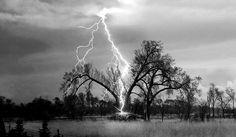 Lightning ----------------------------------------------------------------- Storm ----------------------------------------------------------------- Sky ----------------------------------------------------------------- Weather ----------------------------------------------------------------- Tree