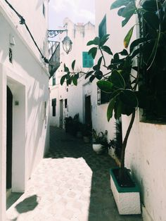 The streets of Assilah, Morocco