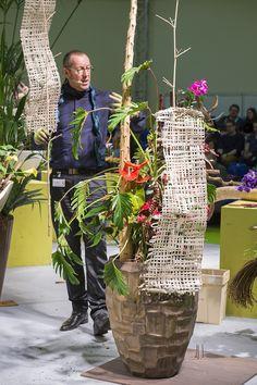 """Die große Lifeshow """"Pflanze des Monats"""" mit FDF-Kreativ-Direktor Manfred Hoffmann"""