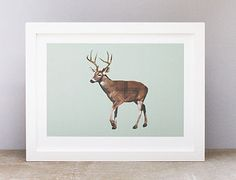 A stunning tartan stag print for hte walls with a mint background and a hint of tartan on the stag's body. Mint Background, Tartan, Frost, Family Room, Moose Art, Animals, Bedroom Ideas, Festive, Walls