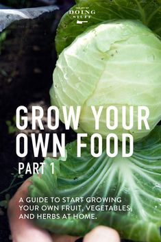 Grow your own food! Having a vegetable garden will easily be one of the most rewarding things you do.  I've smashed as much of my own practical information as possible into this guide for getting it all started. via @artofdoingstuff
