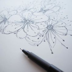 Currently working on something new from my blackthorn blossom drawings.