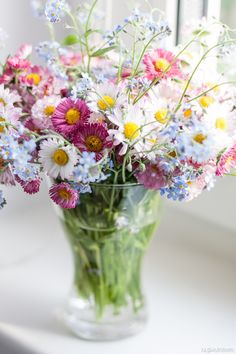 Daisy and Forget-Me-Not Bouquet Summer Flowers, My Flower, Fresh Flowers, Wild Flowers, Beautiful Flowers, Happy Flowers, Meadow Flowers, Flower Bomb, Pastel Flowers