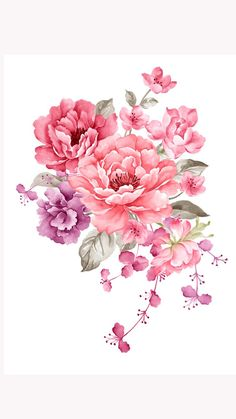 Art Floral, Floral Design, Illustration Blume, Watercolor Illustration, Illustration Flower, Vintage Flowers, Pink Flowers, Watercolor Flowers, Watercolor Paintings