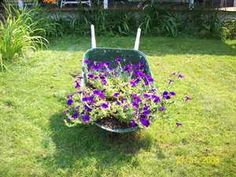 Instructions on how to make a wheelbarrow into a flower planter box.