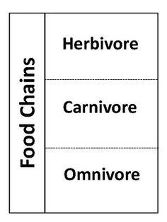 Identify animals as herbivore, carnivore, or omnivore
