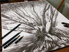 Lidia Barragán.  #drawing #sketch #dibujo #arbol #árbol #tree #treedrawing #graphite #pencil #lápiz #nature #naturaleza