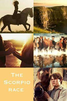 The scorpio race by maggie stiefvater.