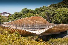 Glulam ribs of the Onepoto Footbridge, Auckland. Architect: Beca Architects.
