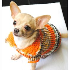 Dog Clothing XXS Cute Chihuahua Sweater Knitwear Orange Colorful Cotton Warm and Comfortable Pet Clothes DK868 Myknitt - Free Shipping