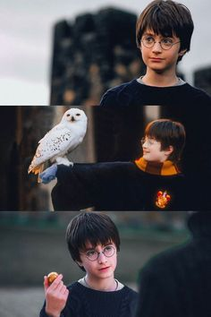 (notitle) - Harry potter - to drawing harry potter Harry Potter Gif, Daniel Radcliffe Harry Potter, Hery Potter, Wallpaper Harry Potter, Arte Do Harry Potter, Theme Harry Potter, Harry Potter Pictures, Harry Potter Universal, Harry Potter Characters