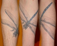 Dragonfly Tattoo Art | dragonfly dragonfly tattoos