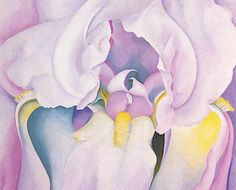 "Georgia O'Keefe painted some of the most beautiful powerful flowers. This dramatic pink iris in nearly abstract form is one of her most captivating. Measures 12.5"" x 16"" on 14 or 16 mesh mono deluxe needlepoint canvas. ff you prefer a different mesh size, please indicate in the Notes section at Checkout. Looks absolutely stunning when finished with silk threads. However, we are happy to pull appropriate wool, cotton or silk threads to help you complete this magnificent canvas. $82"