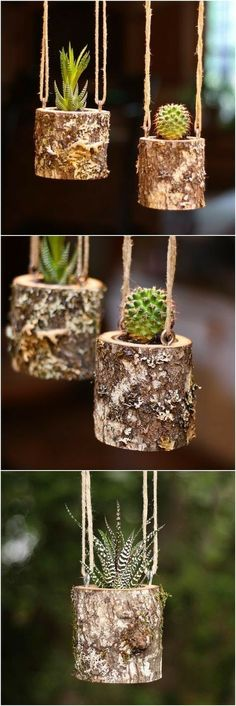 Plans of Woodworking Diy Projects - House Warming Gift Planter Hanging Planter Indoor Rustic Hanging Succulent Planter Log Planter Cactus Succulent Holder Gifts for Her Get A Lifetime Of Project Ideas & Inspiration! Hanging Succulents, Succulents Garden, Succulent Planters, Garden Planters, Hanging Planters Outdoor, Succulent Arrangements, Indoor Succulents, Hanging Herbs, Rustic Planters