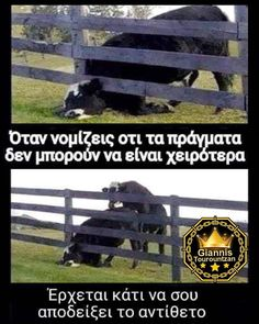 Funny Greek Quotes, Funny Cartoons, Just For Laughs, Kai, Funny Pictures, Humor, Beautiful, Fanny Pics, Funny Pics