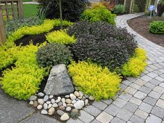 Landscaping ideas.