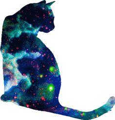 http://omgcatsinspace.tumblr.com/