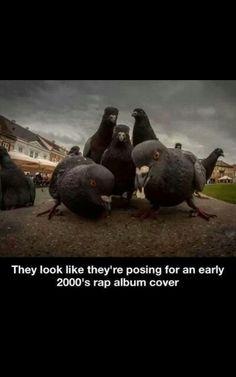 Thats hilarious!
