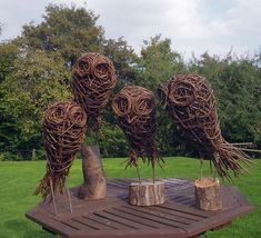 A group of Willow Owls, these affordable artworks are handmade by Victoria Westaway in her home studio. The Sculptures are woven onto a metal armature and come with a wooden base.Please contact Victoria for more information.