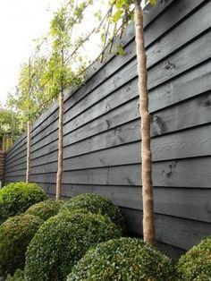 Bekijk de foto van Gisela40 met als titel zwarte schutting met leibomen, stijlvol en andere inspirerende plaatjes op Welke.nl.